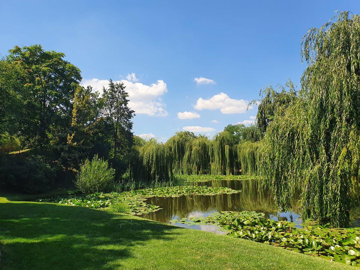 Craiova Botanischer Garten
