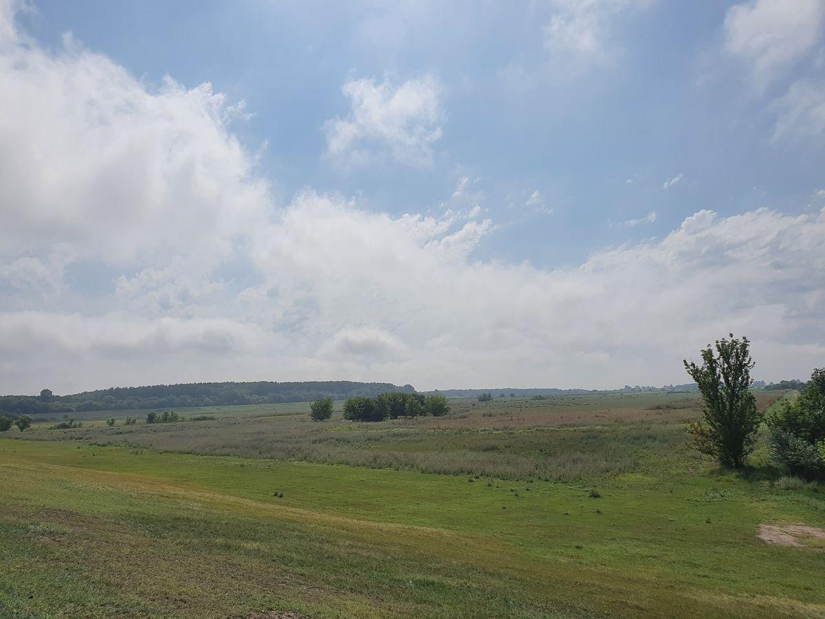 Feld östlich von Szeged