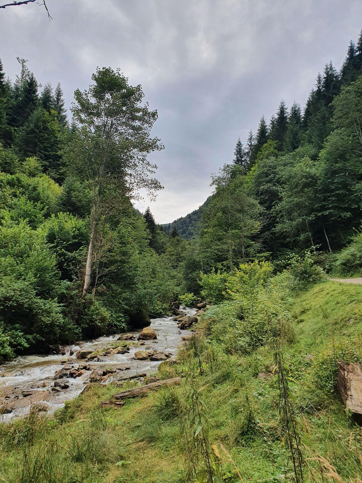 Karpaten weiter hinter Râu Sadului