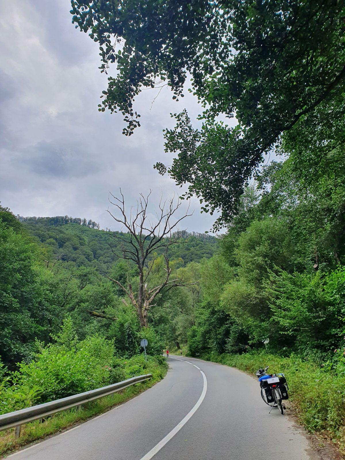 Zwischen Sadu und Râu Sadului
