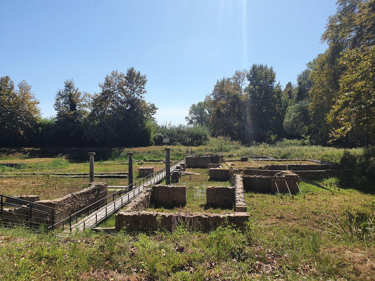 Dion - Iris Tempel