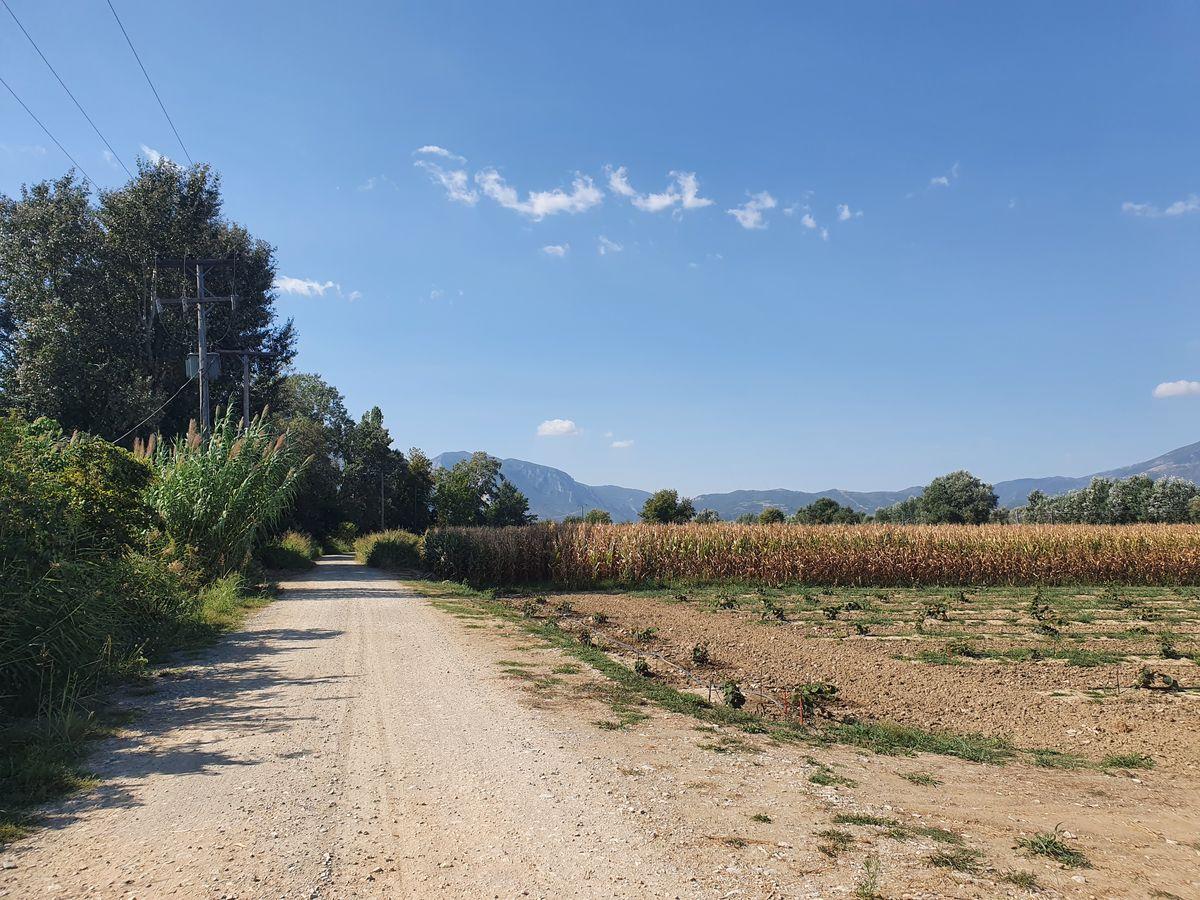 Feldweg hinter Papapouli