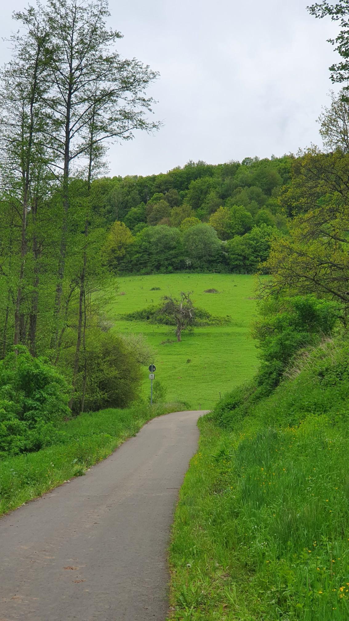 Bosenbach Saarland