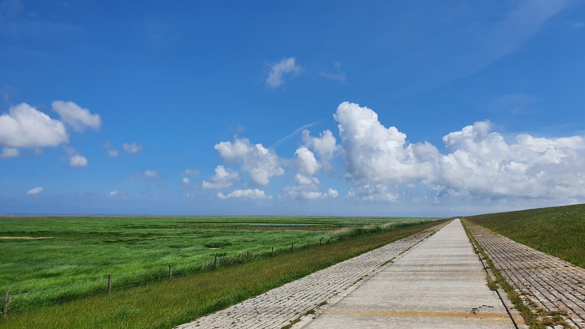 Radweg am Damm meerseitig