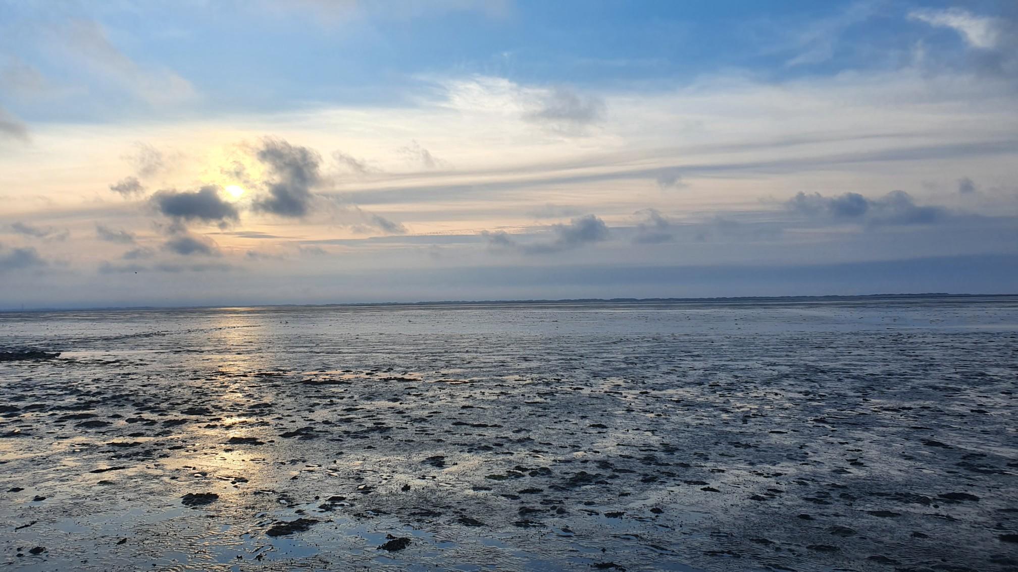 Wattenmeer bei Dornum
