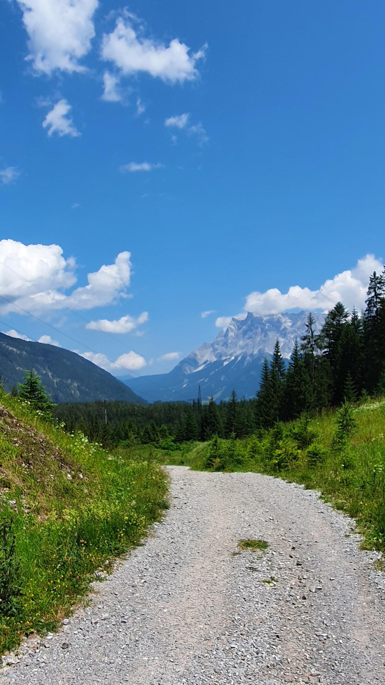 Alpen bei Biberwies