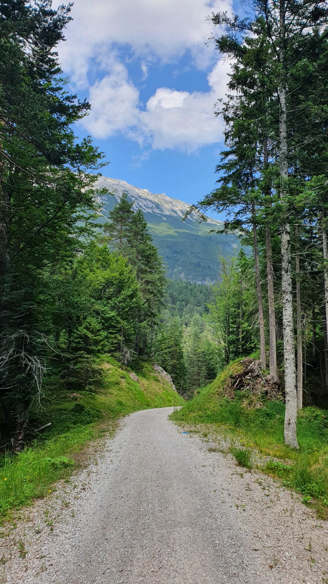 Alpen bei Nassereith