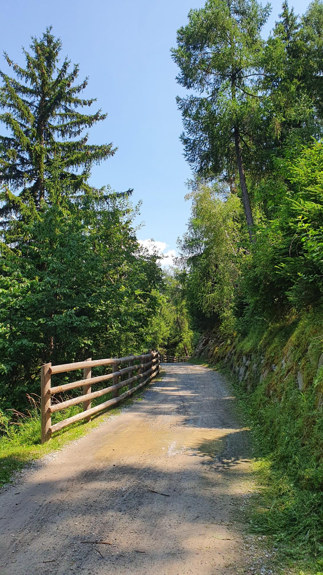 Bei Silandro (Schlansers) nördlich von Bozen