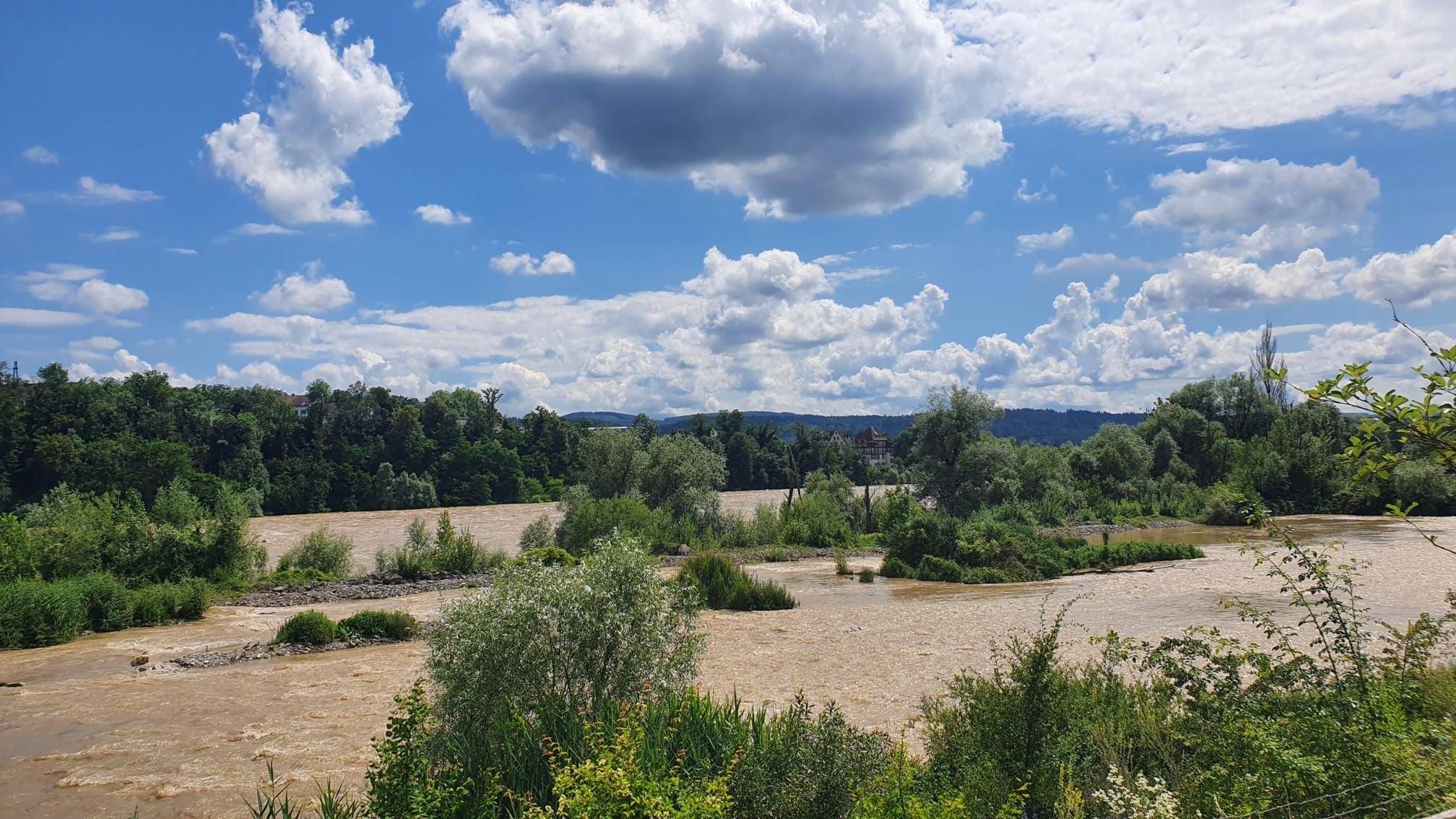 Hochwasser am Rhein bei Rheinfelden