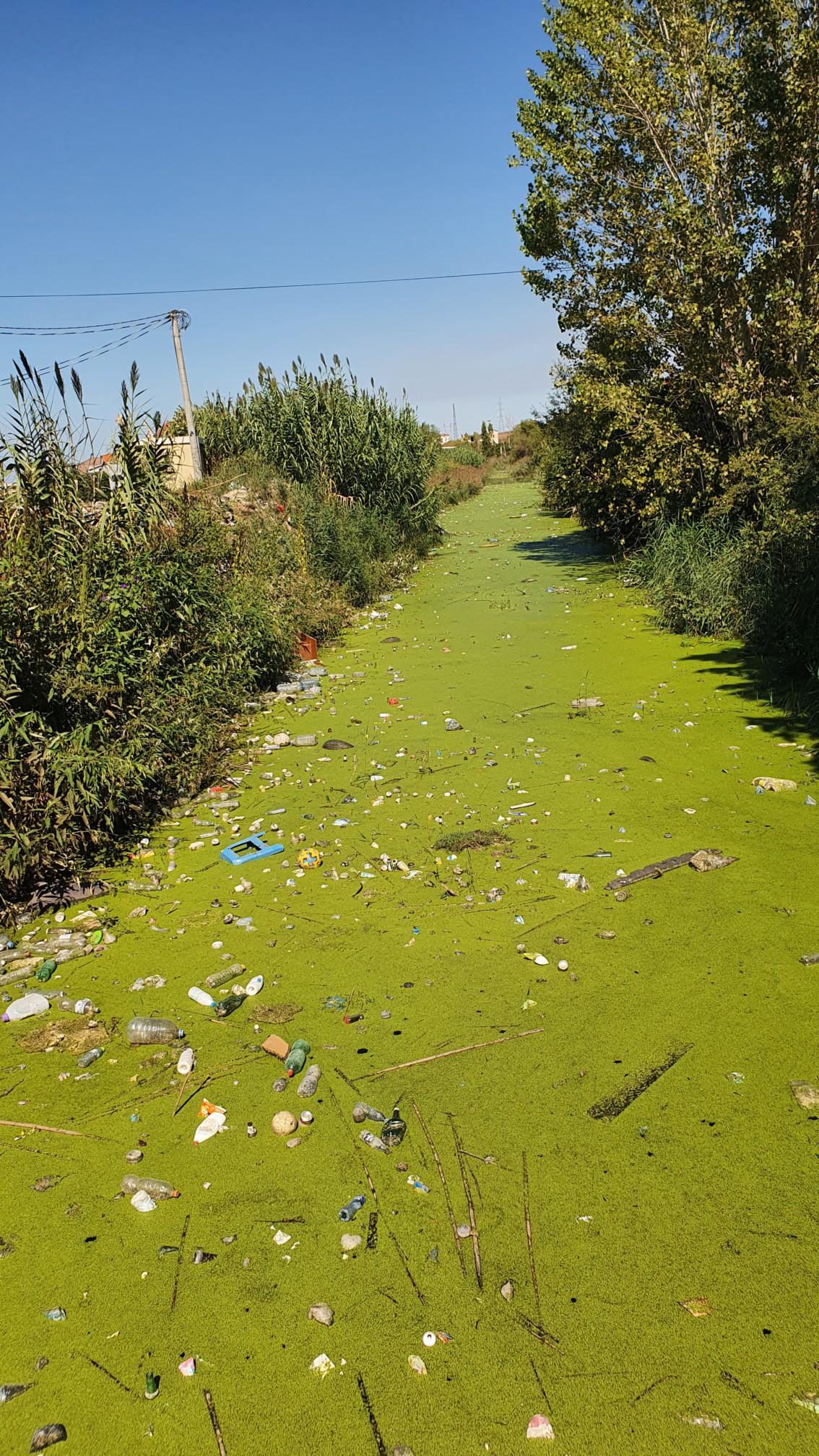Vermüllter Fluß in Durras